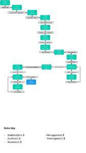Internal Audit Process pdf